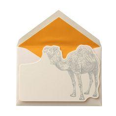 Graphic Illustration. Camel. Envelope. Yellow.