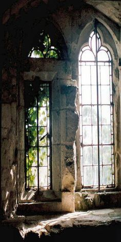 Beautiful windows. The story they could share, if they could talk.