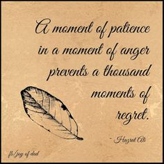 A moment of patience in a moment of anger prevents a thousand moments of regret..