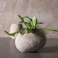 Shaped by the power of a flowing river, the smooth, rounded surfaces of the stone in this river rock pot display the beauty of sustainable design. Fill it with your favorite flower, fern or succulent for an all-natural update on the plastic planter. This pot features drilled drainage holes.