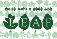 Leaves published by Electric Typographer. #fonts #spring #garden