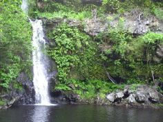 Anna's Pond, the big island of Hawaii