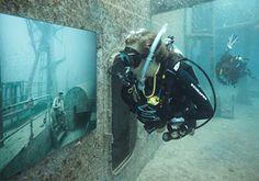 Underwater art gallery in Florida.