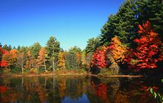 new england, autumn, colors, lake, white mountains, leaves, place, fall photos, new hampshire