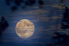 Surreal Moon