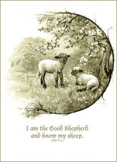 The good shepherd knows his sheep.
