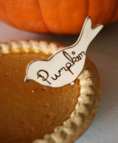 pumpkin pie <3
