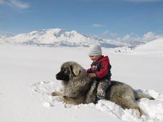 "Student Conservation Association's ""I Heart Snow"" photo contest."