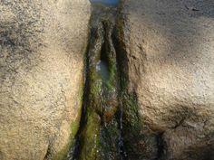 Yoni Rock....