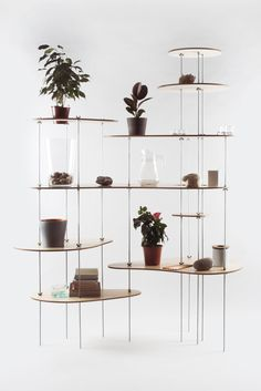Modern shelves / interesting use of wing-nuts