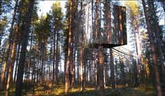 A tree house with mirrors on the outside