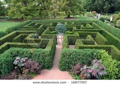 My mom makes a beautiful garden! But she has always wanted a hedge maze. I promised her that one day, I will buy her a house, and she can have her own hedge maze. #uncommon #contest
