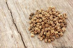 Organic Beet Seeds
