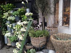 Flower stall at Liberty, London