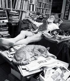 Ernest Hemingway, Crazy Cat Lover
