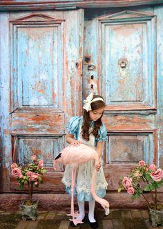 print photographi, titanium cloth, backdrops, alice in wonderland, background vintag, photographi background, photography backgrounds, vintag door, vintage doors
