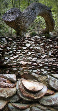 In several wooded areas around Cumbria and Portmeirion in the UK, people have been hammering small denomination coins intro trees for centuries. The practice is said to date back as far as the early 1700s, in Scotland, where ill people would stick florins into trees in hopes that the trees would cure their illnesses. In 1877, Queen Victoria wrote about visiting an oak tree with coins stuck in it in Scotland's Highlands. Amazing.