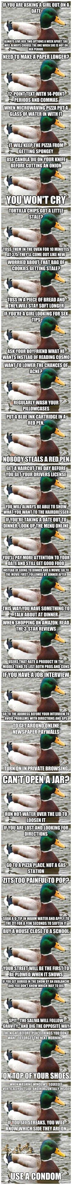lifehack, duck