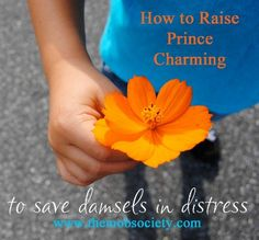 How to Raise Prince Charming