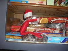 Gingerbread Elf on the Shelf  Alvin, our elf is sneaking a gingerbread cookie