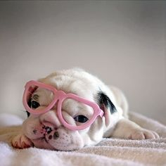 i doubt I'm going to look *this* cute.