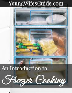 Freezer cooking can