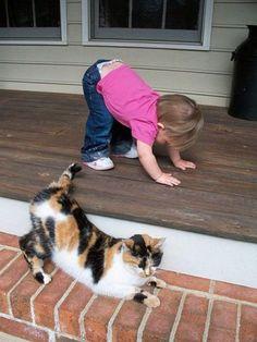 Downward facing dog - No, sorry, CAT!  =)