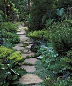 love the pathway