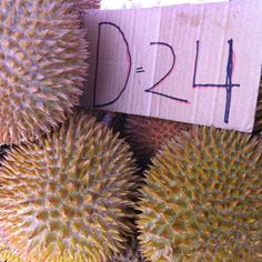 Durian, king of fruits in Malaysia