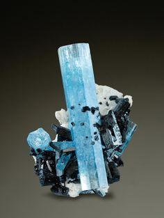 Aquamarine on Feldspar & Schorl /  Mineral Friends <3