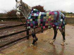 Yarn-Horse-Bombing? Horse-Knitting? Cabaguerrilla de ganchillo? Dollybex's Horse Coat...