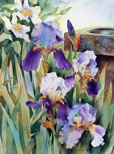 Irises. Watercolor