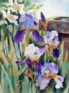 Irises. Watercolor