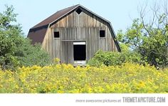 Surprised Barn