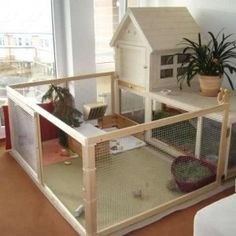 Indoor Rabbit Run Indoor Rabbit Housing Bunny Pinterest Indoor rabbit house, Rabbit hutches and House rabbit