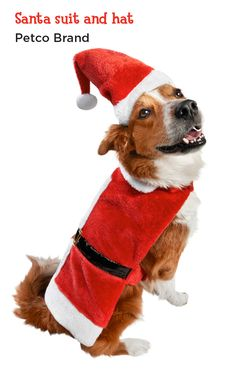 Transform your pup into Santa Paws, the most festive ho-ho-ho hound in the neighborhood.