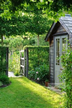 Garden gate in Hawthorn hedge (Crataegus) with summer house and pleached Field Maple trees (Acer campestre)