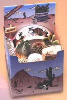 Cactus Planting Kit - This kit contains 5 cacti, a 5″ Southwestern designed ceramic planter, soil, decorative stones, and an Arizona sign. Everything you need for a small cactus desk garden. Now you can own a piece of the American Southwest! Desert Canyon Gifts presents a selection of Cactus Growing Kits. Most cactus planting kits come complete with cacti, the right type of soil, decorative pebbles, planter, and a unique Arizona sign. $38.95