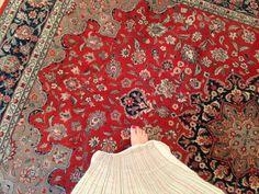 famili room, replac carpet, wood floorssomeday, orient rugcarpet