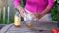 how to get rid of flies in the yard with a homemade fly
