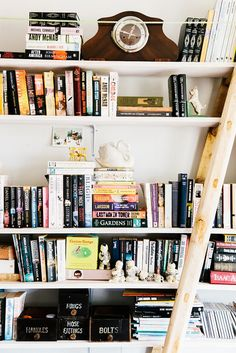 ladder = bookshelf = awesome!