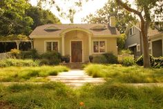 Lawn alternative using sedge plants - Landscape by June Scott Design