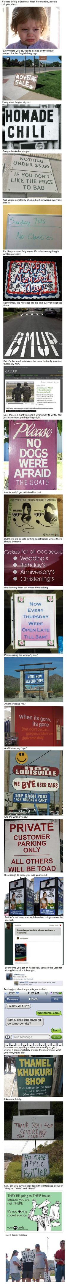 23 Reasons Why It's Hard Being A Grammar Nazi. These are all too true.
