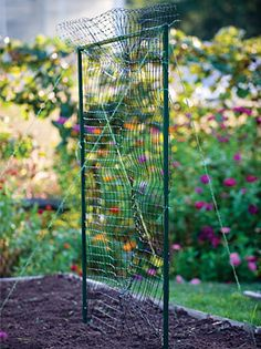 Modular Trellis Net Kit - Plant Supports at Cooksgarden.com (grow verticle to expand garden space. 25 sq.ft./ modular snap steel tubing, uv-stabalized plastic netting, includes spool of twine and tent spikes for stability-$69.95)