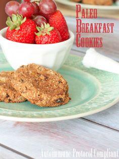 Allergy Friendly Breakfast Cookies - Against All Grain