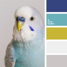 color pallets, color inspir