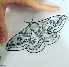 I suck bc with tattoos I literally want everything on my wrist. but for a moth I kinda want one like on my chest??? Or side or smthn idk