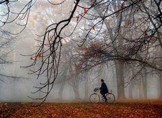 Autumn ride.