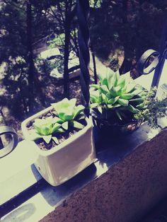 take a bit of sun ;)