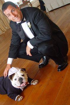 !Adam Sandler and his bulldog Matzoball.